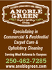 Anoble Green Carpet Cleaning