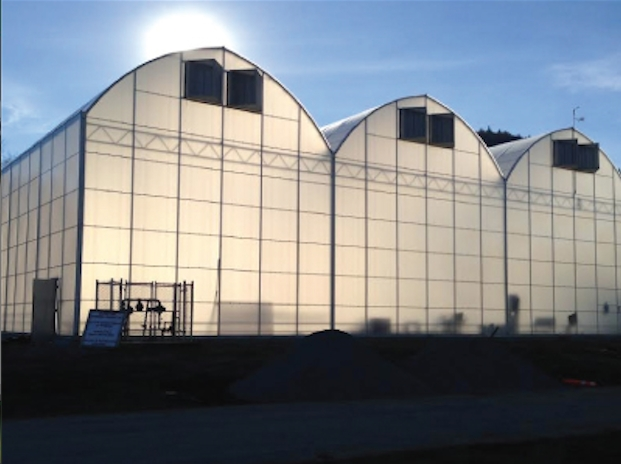 A greenhouse system similar to the one pictured on Kaneh Bosm Biotech's website is proposed for Penticton Indian Band reserve land.