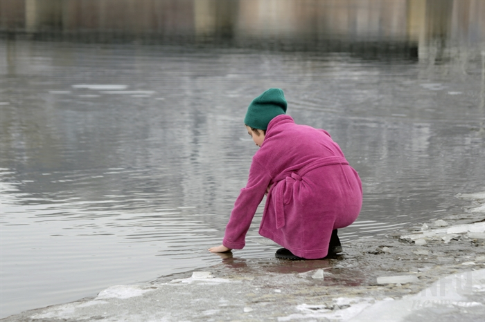 Testing the waters before the Kamloops Polar Bear Swim at Riverside Park, Thursday, Jan. 1, 2015.