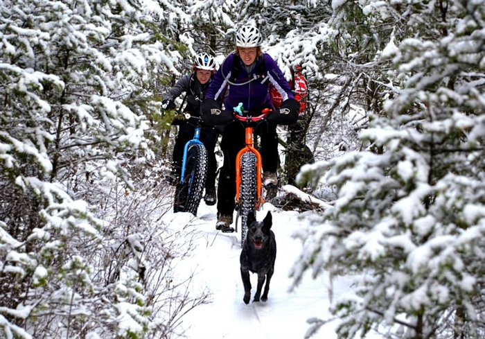 Snowy trails are a playground for fat bikers.