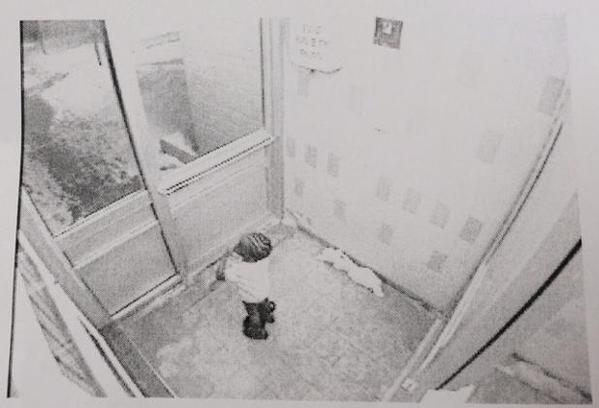 A surveillance camera caught an image of Elijah moments before he wandered outside into -20 C weather.
