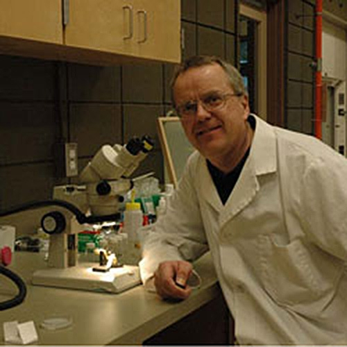 Dr. Robert Higgins in the lab