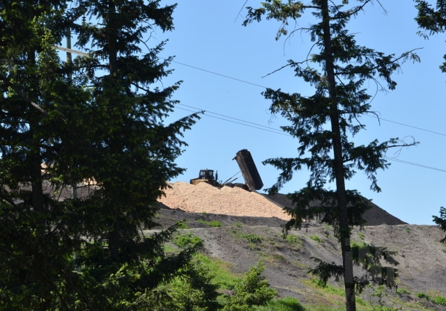 Tolko began dumping sawdust on the ash pile this week as a short term solution to keeping the dust down.