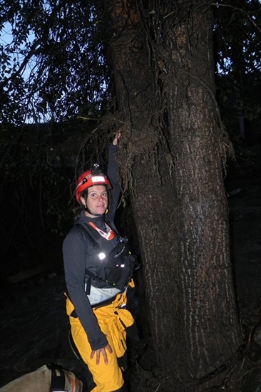 An unidentified search and rescue volunteer shows the high water mark on a tree in Cache Creek following a flash flood, Saturday, May 24, 2015.