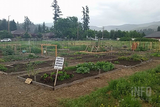 The DeHart Community Garden in Kelowna.