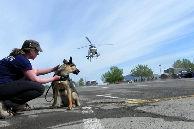 Gertie gets another step into her training with Michelle Liebe by getting used to helicopters.