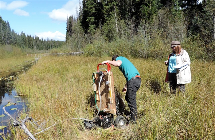 UBC professor Deborah Roberts, right, supervises student Keith Story as he sets up test equipment on a creek in a cattle grazing area.