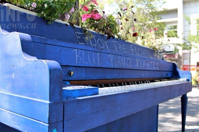 The vandalized blue piano was repurposed as a flower planter and sits half a block from its old location on Victoria Street