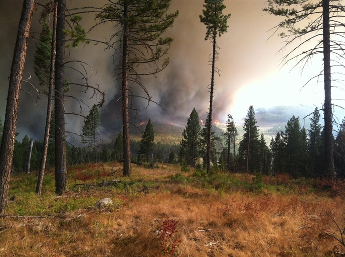The Stickpin Fire burning in Washington State is pictured in this contributed photo taken on Aug. 14, 2015.