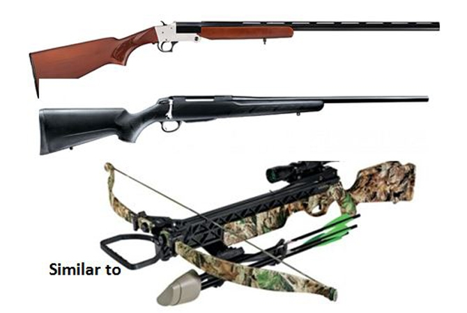 Weapons similar to these were stolen from a truck in Lake Country.