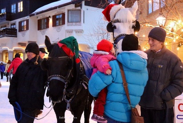 Even the horses get in the holiday spirit at Sun Peaks during Santa's Alpine Visit.
