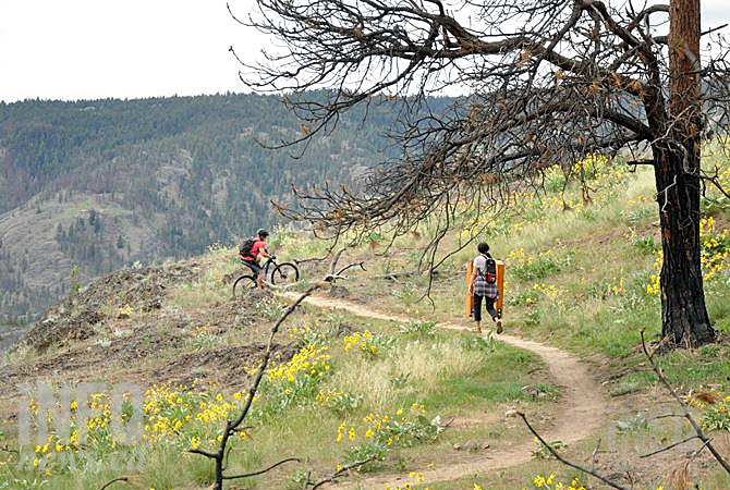 The Mount Boucherie Trails in West Kelowna.