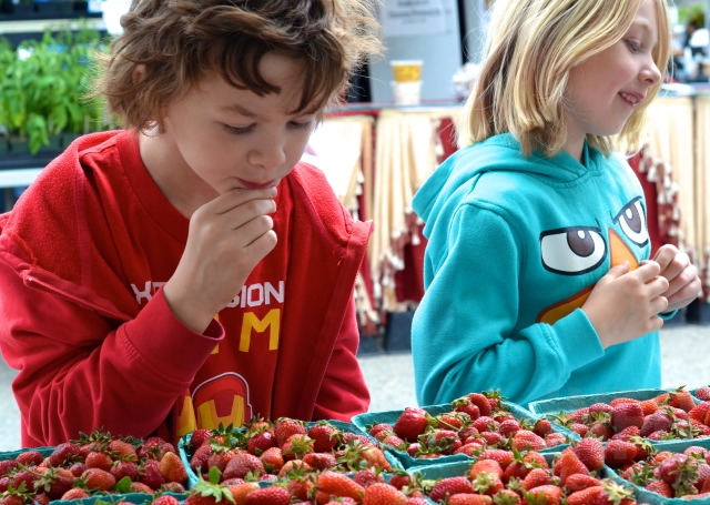 Siblings Phoenix, 8, and Raine, 7, taste test strawberries at the Vernon Farmers Market.