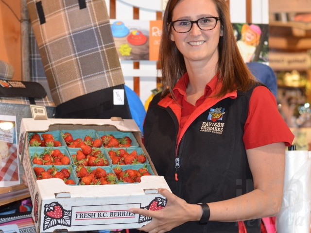 Leah Campbell with a flat of fresh, local strawberries from their farm in the North Okanagan.