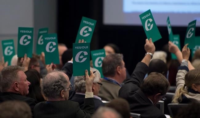 Delegates hold up vote cards as they vote to change the current wording of the party's same-sex marriage policy at Conservative Party of Canada convention in Vancouver, Friday, May 27, 2016.