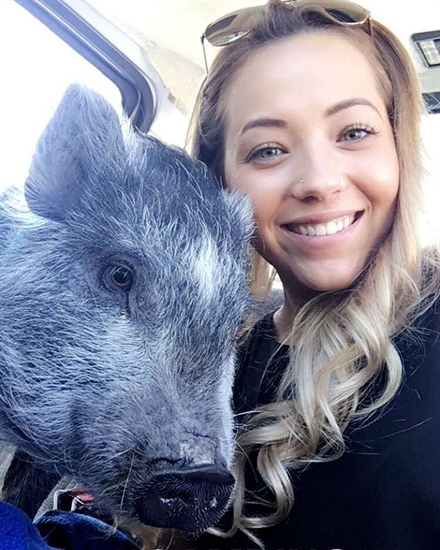 Layla the pig with owner Coralee.