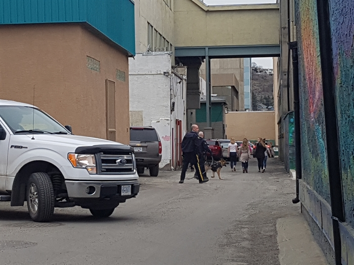 Officers search downtown Kamloops for the suspect that robbed TD Canada Trust around 5:16 p.m. on Friday, March 31, 2017.