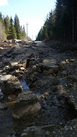 Chute Lake Road after a washout earlier this month.