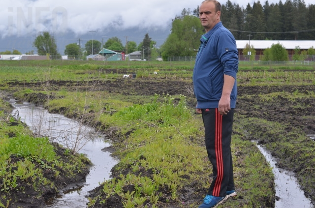 Dorel Krsta dug trenches throughout his field, but the ground remains too saturated to plant.