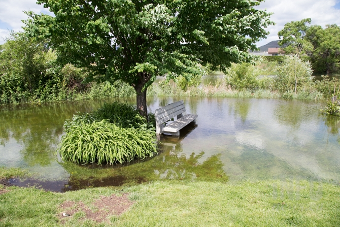 A bench is surrounded by water at McArthur Island Park.
