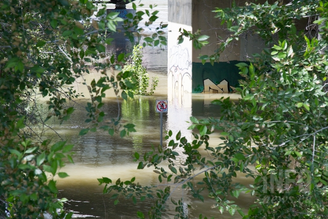 Water under the Overlanders bridge has crept up past the sandbar and trees.