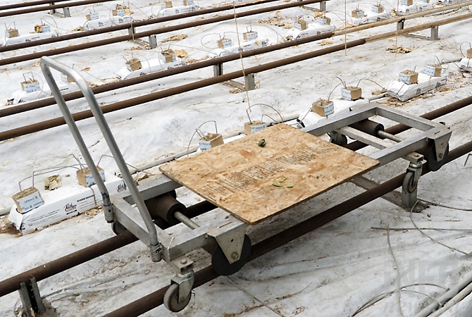 Rutland Farm Market uses a rail system both to heat the greenhouse and carry a powered cart.
