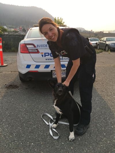 Cpl. Stephanie Lin with the dog found in Williams Lake. They are happily returning him today.