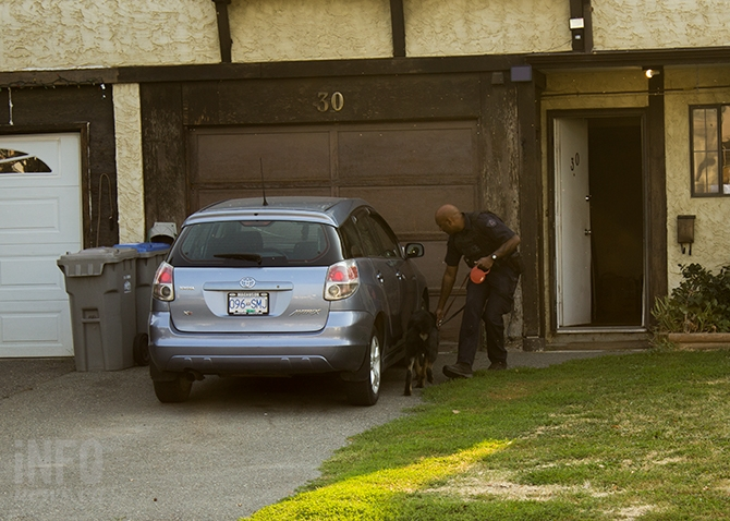 A police dog and its handler search for explosives outside a home on Cambridge Crescent in Kamloops where a potential incendiary device was found, Tuesday, Aug. 29, 2017.