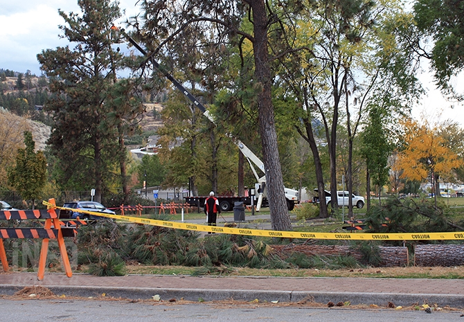 Crews clean up in Skaha Lake Park in Penticton, Tuesday, Oct. 18, 2017, after several trees were toppled by strong winds.