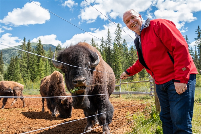 Premier John Horgan is seen with his new friend Chester at the Rocky Mountain Buffalo Ranch & Guest Cottage Buffalo Tours in Golden, B.C. in this undated photo submitted by the Government of British Columbia.
