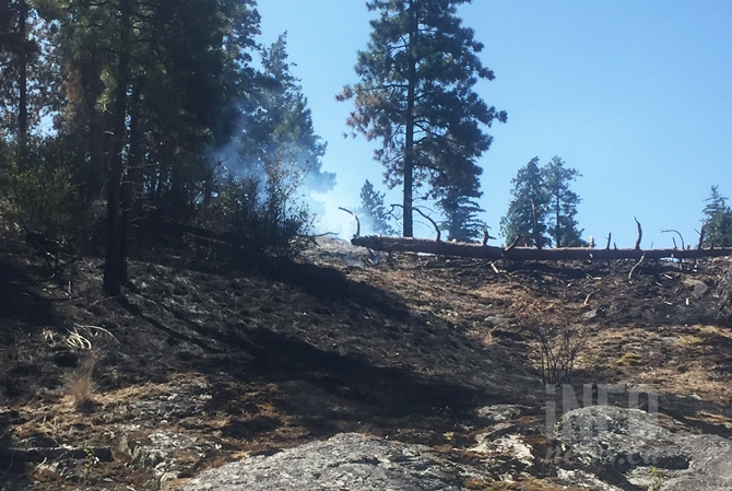 Ladder fuels at work. You can see from this July 22 picture that mostly what burned in the park was grass. The smoke you see is a downed log still smouldering. Those are ladder fuels and we need fires to reduce those so small fires don't elevate into uncontrollable crown fires.