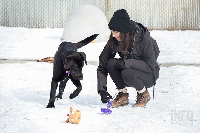Carmen Facciotti, a Kelowna SPCA volunteer, socializes Olive, who was part of an 11-dog intake from Northern B.C. Some of the other dogs have gone on to different shelters around the province.