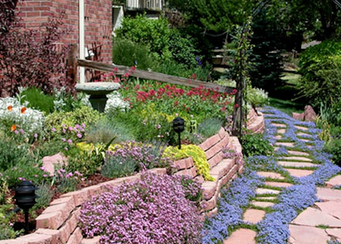 This photo shows a large xeriscape garden in Denver, Colorado, where the term originated in the 1980s.