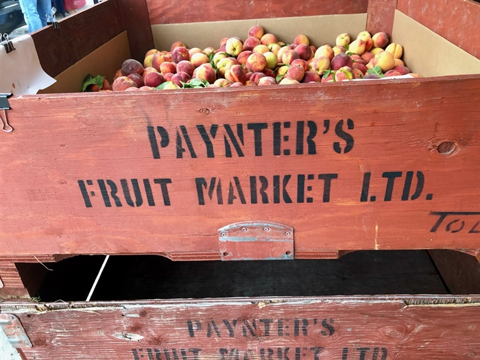 Paynter's Fruit Market has been operating since 1951 when Grandpa Paynter sold his first cherries roadside