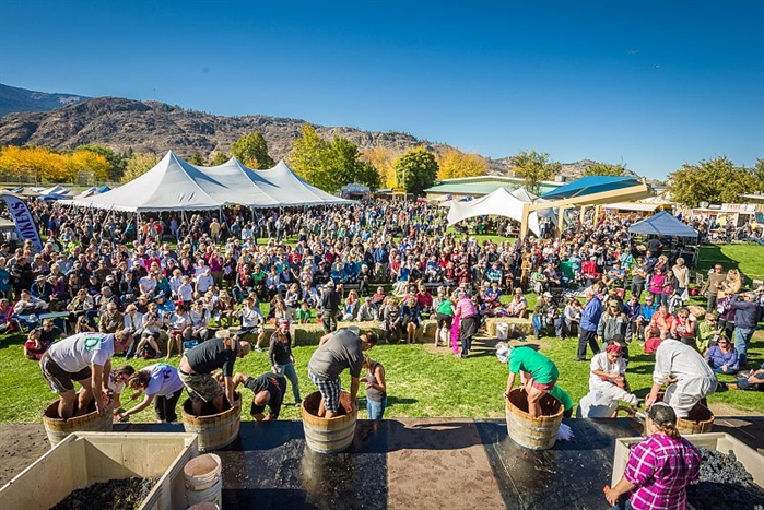 Oliver's Fest of Grape is a wine event that the whole family can enjoy