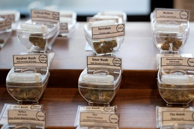 In this Wednesday, Oct. 9, 2019 photo, samples of marijuana, in tamper-proof containers that are secured with cables, are displayed at Evergreen Cannabis, a marijuana retail shop, in Vancouver, B.C. The nation has seen no sign of increases in impaired driving or underage use since Canada joined Uruguay as the only nations to legalize and regulate the sale of cannabis to adults _ those over 19 in most Canadian provinces.
