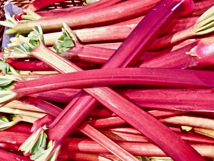 Rhubarb is one of the first to arrive from local gardens and farms.