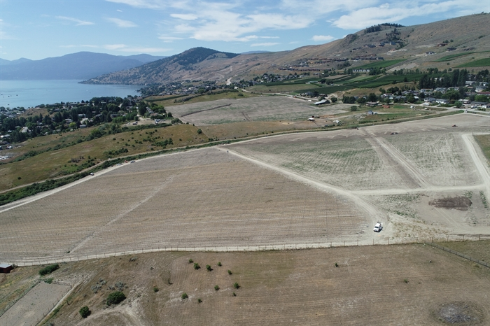 Grapes will soon be planted at Markus Frind's new vineyard off Bella Vista Road, Vernon
