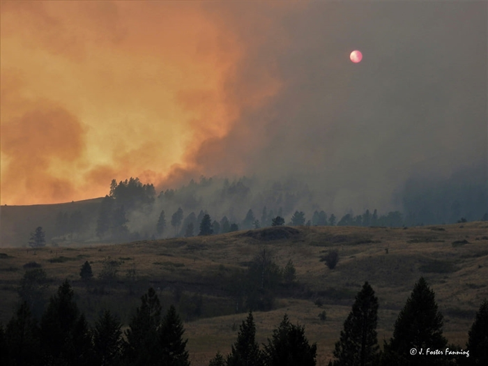 The Customs Road wildfire in Washington State currently burns 12 km from the B.C.  Village of Midway.