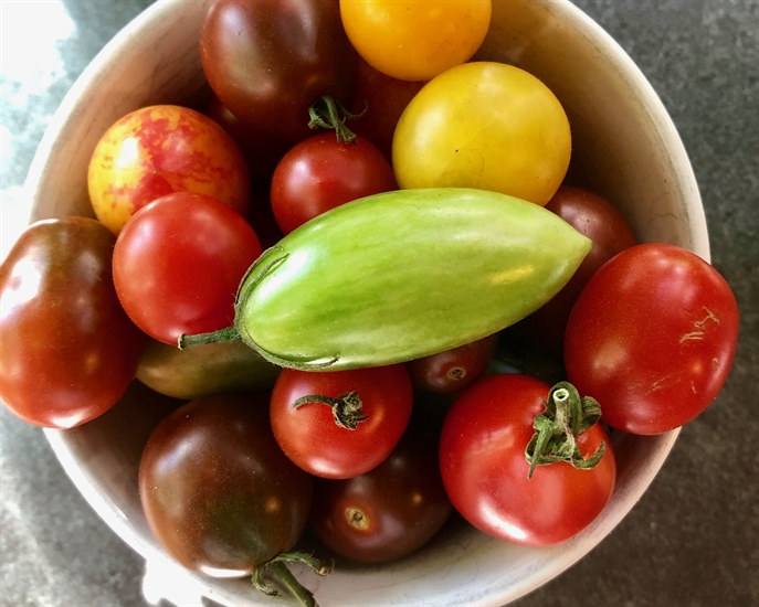Heirloom tomatoes are at the end of their season now so grab them if you see them at the farmers market!