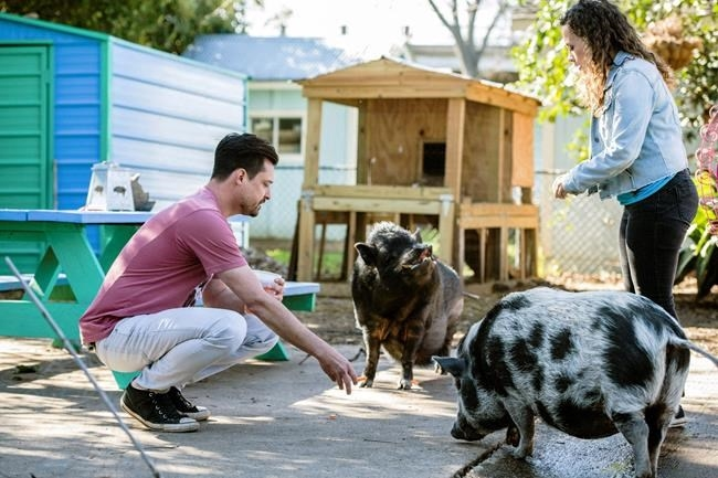 This image released by CBS All Access shows Dan Illescas, left, and Tracey Stabile of the Central Texas Pig Rescue in a scene from the CBS All Access docuseries
