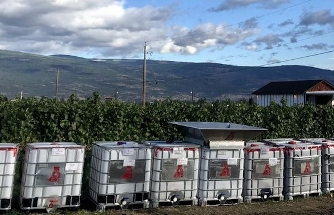 A recent pilot program by the Okanagan's Winecrush saved 150 tonnes of grape waste products from the landfill.