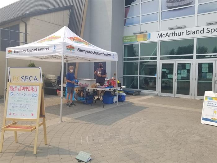 Volunteers brave summer heat to provide pet supplies to evacuees in Kamloops
