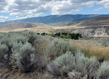 Canada's only desert — by precipitation — is roughly four hours north of Osoyoos.