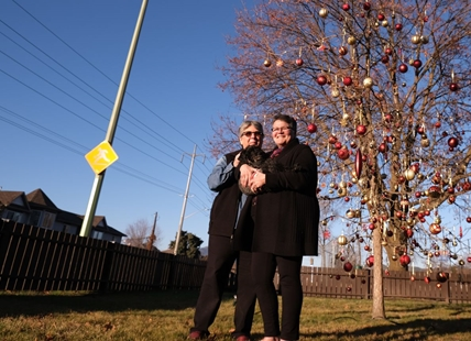 How a little oak tree brought Kelowna neighbours together this Christmas