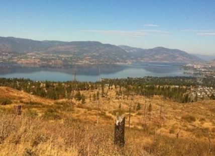 This land will remain undeveloped for far into the future after Kelowna city council nixed the Thomson Flats housing proposal.
