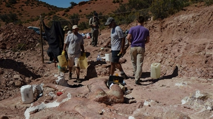 This photo released on Saturday, May 17, 2014 shows a team of paleontologists working at the site where the bones of a sauropod dinosaur were unearthed, near Trelew, Argentina.