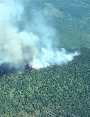 A forest fire burning near Sugar Lake in the North Okanagan on Saturday, July 12, 2014.