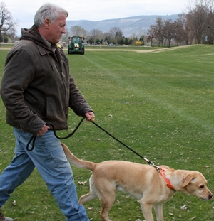 Mike Ritcey gets Juno ready to chase off the geese at McArthur Park while city crews work at cleaning up the excrement left behind by the thousands of geese that called the park home earlier this spring.