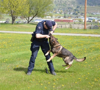 Const. Mark Jones says the canine unit is hard work, but he'd never go back.
